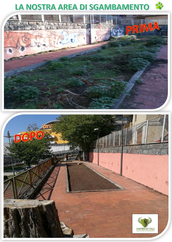 Prima e dopo la pulizia_FREEDOGS_ok